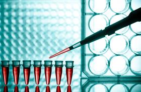 Las pruebas diagnsticas pueden identificar al agente causante de enfermedades
