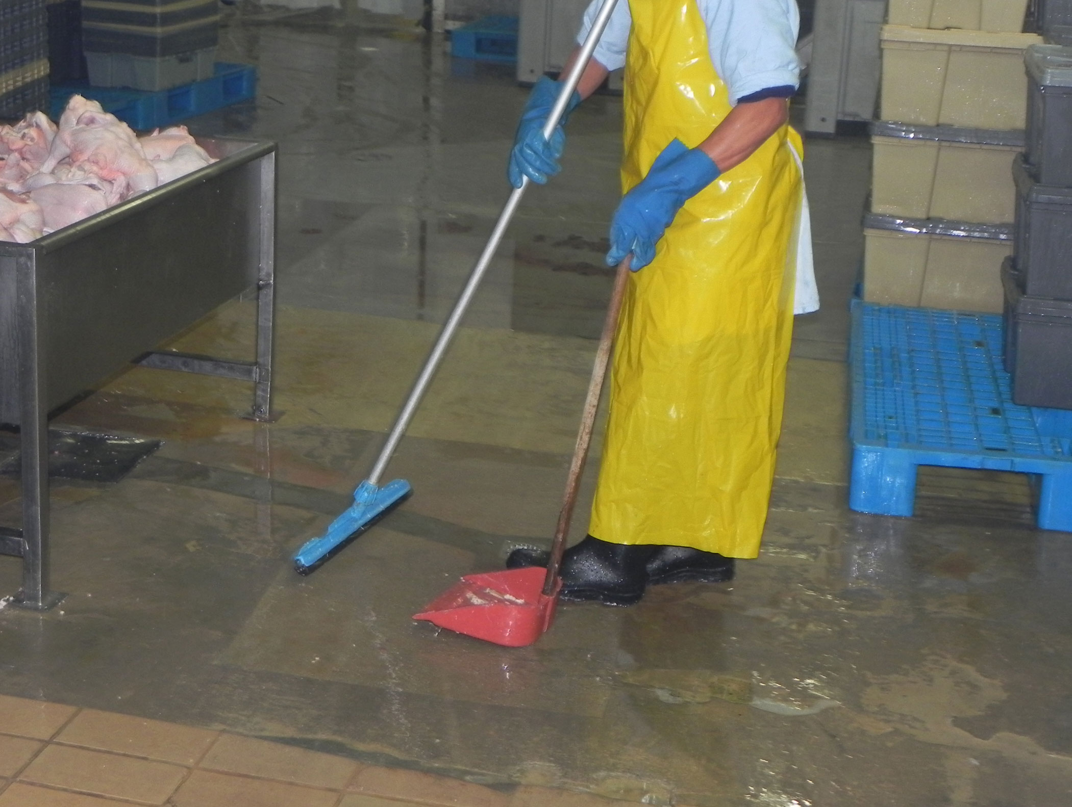 Uso eficiente del agua en plantas de faenamiento 1 el for Manual de limpieza y desinfeccion en industria alimentaria