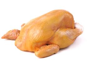 pigmentacion de carne de pollo, el sitio avicola, avicultura
